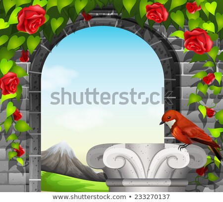 A stonewall with roses and a bird Stock photo © bluering