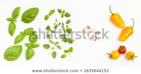 Taze keklikotu yaprakları siyah gıda yeşil Stok fotoğraf © Digifoodstock