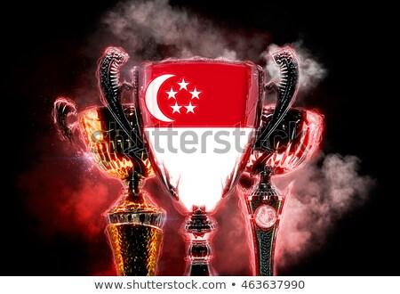 Trofee beker vlag Singapore digitale Stockfoto © Kirill_M