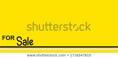 big sale, vector handwritten text Stock photo © sdmix