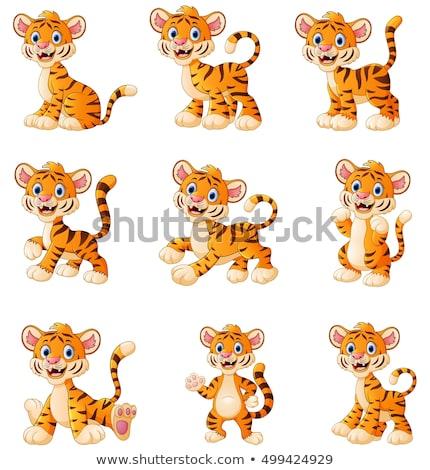 Zâmbitor Tigru Mers Albastru Colorat Desen