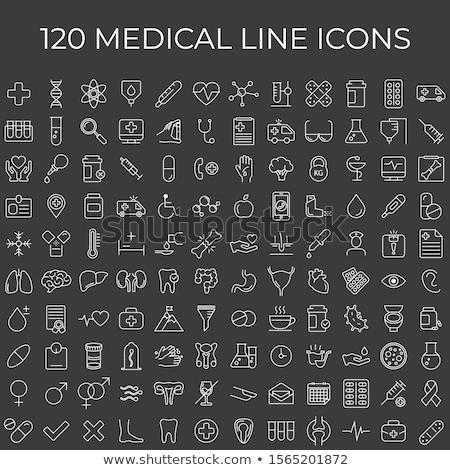 human kidneys line icon stock photo © rastudio