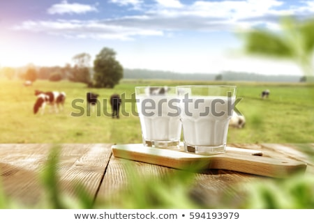 taze · süt · cam · süt · beyaz · gıda · soğuk - stok fotoğraf © Digifoodstock