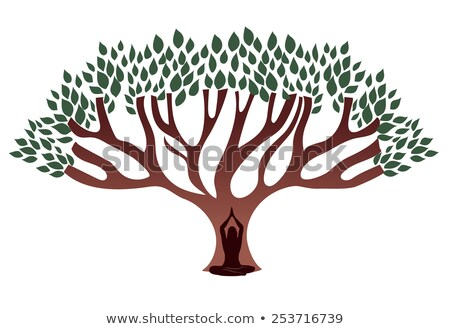 woman meditate under the big thick tree stock photo © tefi