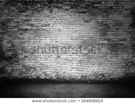 Concrete wall as bleak background Stock photo © stevanovicigor
