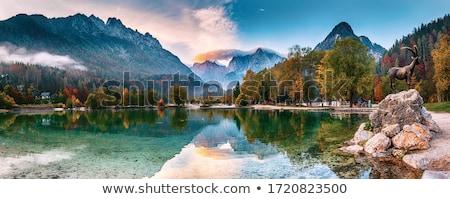 красивой · горные · пейзаж · Солнечный · зима · день - Сток-фото © stevanovicigor