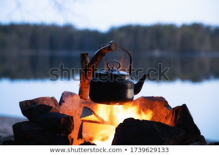 hoguera · fuego · madera · noche · llama - foto stock © stephaniefrey