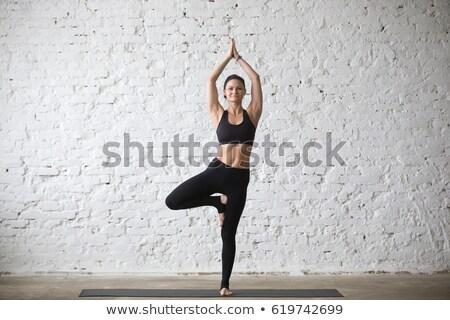portré · mosolyog · fitnessz · lány · nyújtás · kezek - stock fotó © wavebreak_media