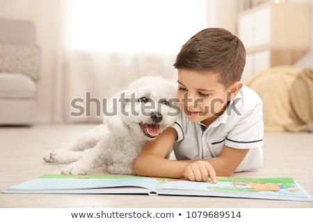 Livre de coloriage amitié garçon chien couleur chiffre Photo stock © Olena
