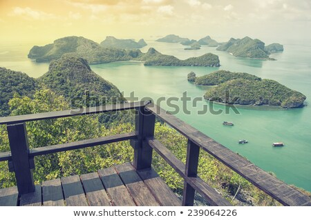 nascer · do · sol · correia · ver · ilha · belo - foto stock © Yongkiet