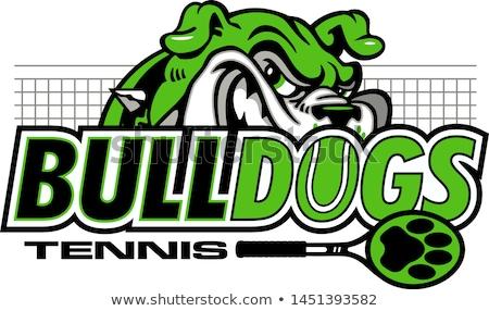 Stock fotó: Bulldog Tennis Sports Mascot