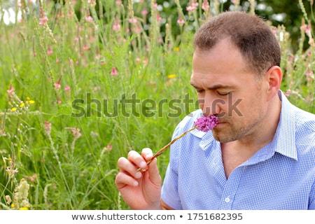 mature man smells flower. Stock photo © IS2