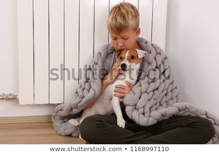 Köpekler oturma battaniye radyatör köpek zemin Stok fotoğraf © IS2