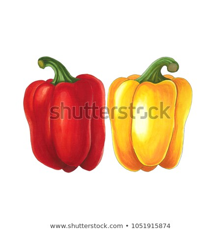 Pepper on a white background. Sketch done in alcohol markets Stock photo © user_10003441
