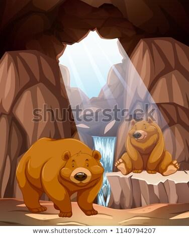Ayılar yeraltı mağara su örnek Stok fotoğraf © bluering