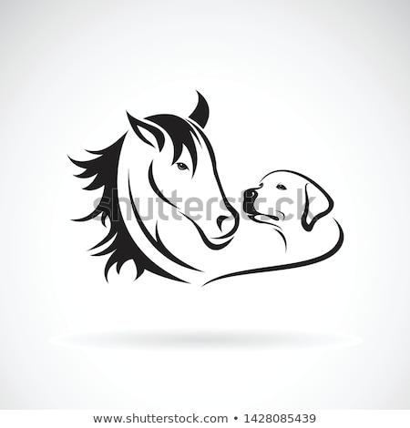 Beagle собака сердце силуэта кто-то дизайна Сток-фото © Krisdog