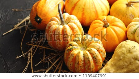 Mellow pumpkins laid on hay Stock photo © dash