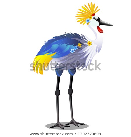 Majestic bird crown crane with headdress or Balearica pavonina isolated on white background. Vector  Stock photo © Lady-Luck
