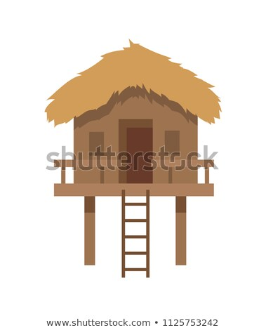 Bungalow with Ladder Closeup Vector Illustration Stock photo © robuart