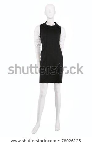 манекен · рубашку · изолированный · белый · синий - Сток-фото © gsermek