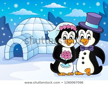 Pinguin bruiloft afbeelding bloem paar kunst Stockfoto © clairev