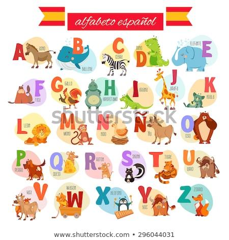 Spanyol ábécé rajzolt állatok szett rajz illusztráció Stock fotó © izakowski