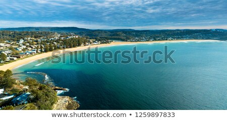Panoramic views of Avoca Beach Stock photo © lovleah