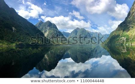 twijfelachtig · geluid · mooie · New · Zealand · water · landschap - stockfoto © alexeys