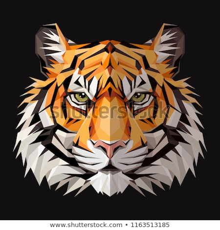 colorful tiger face vector icon logo Stock photo © blaskorizov