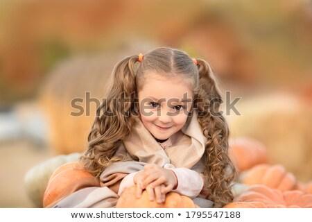 famiglia · parco · picnic · ridere · donna · bambino - foto d'archivio © deandrobot