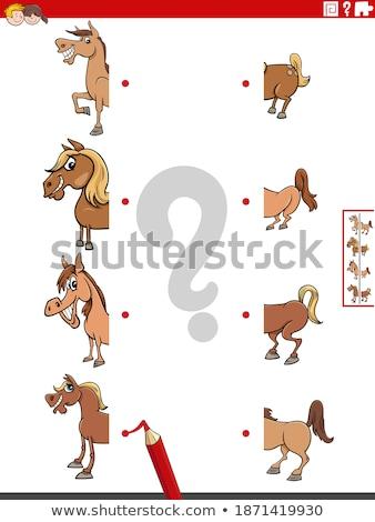 match halves of funny horses educational game stock photo © izakowski