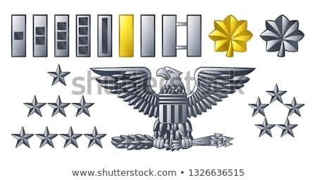Zdjęcia stock: Army Military Officer Insignia Ranks