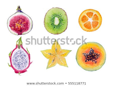 Dragon fruit and kiwi on red background. Watercolor illustration Stock photo © ConceptCafe