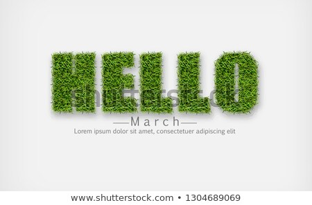 hellos sign in green grass vector realistic hello march spring symbols stock photo © frimufilms