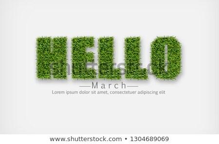 Felirat zöld fű vektor valósághű hello tavasz Stock fotó © frimufilms