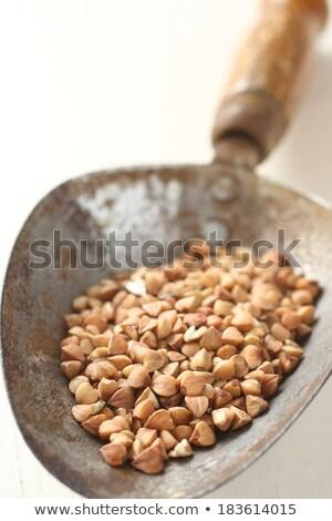 Metal kürek tahıl beyaz gıda doğa Stok fotoğraf © Melnyk