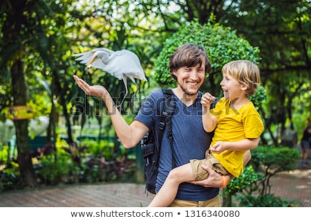 Father and son feeding ibes in the park. Little Egret Cattle egret Bubulcus ibis Waters Edge. Family Stock photo © galitskaya