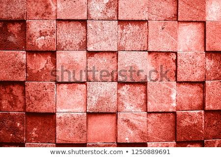 каменной стеной текстуры жизни коралловые цвета аннотация Сток-фото © dolgachov