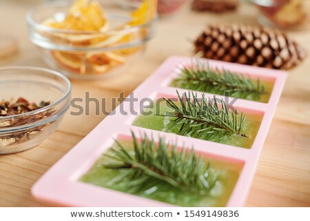 Handmade green soap with conifer and glassware with aromatic ingredients Stock photo © pressmaster