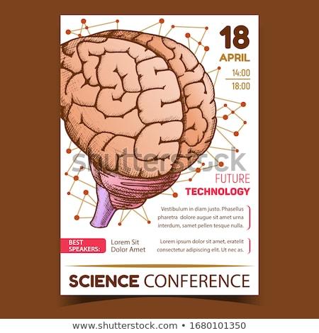Anatomisch wetenschap conferentie promo poster vector Stockfoto © pikepicture