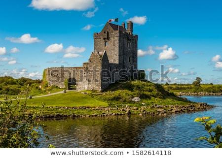 Kastély Írország torony ház part víz Stock fotó © borisb17