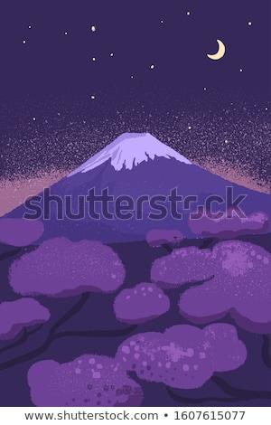 śliwka · kwiaty · Mount · Fuji · czerwony · śniegu · górskich - zdjęcia stock © craig