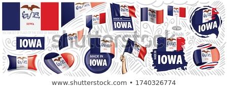 вектора набор флагами американский Айова различный Сток-фото © butenkow
