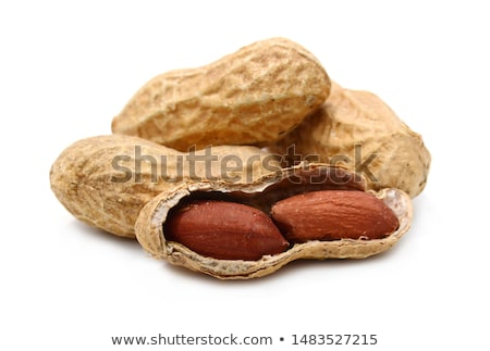 Stock photo: Peanuts  on white background