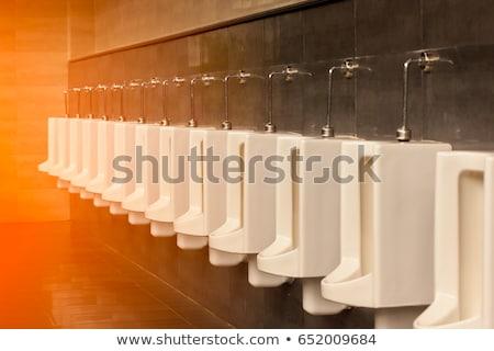 Modern toalett belső csetepaté fotó fém Stock fotó © Ansonstock