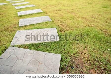 stone concrete steps stock photo © bobkeenan