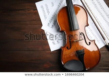 violín · notas · vector - foto stock © coolgraphic