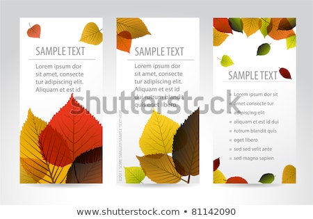 fresh natural fall vector vertical banners with leafs stock photo © orson