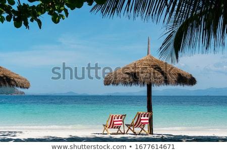 summer holiday Stock photo © phbcz