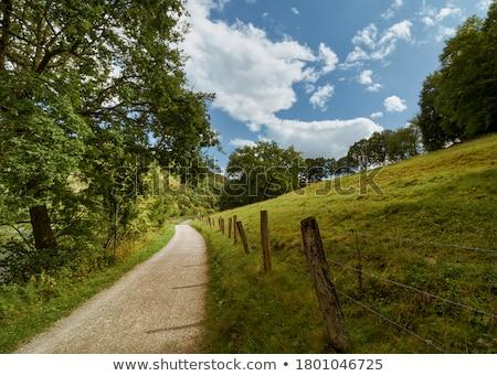 Eifel scenery Stock photo © prill